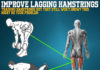 IMPROVE LAGGING HAMSTRINGS