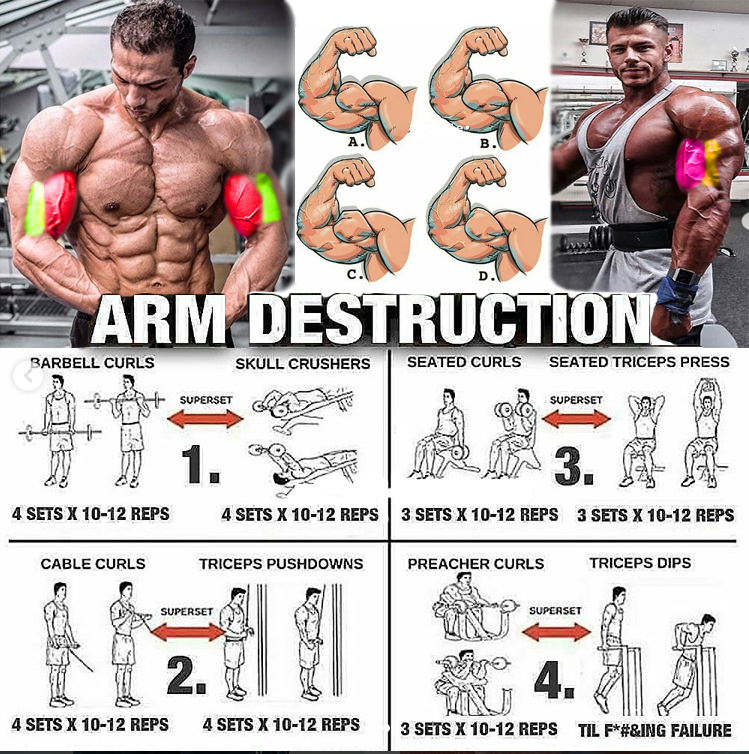 🔥Training of the biceps🔥
