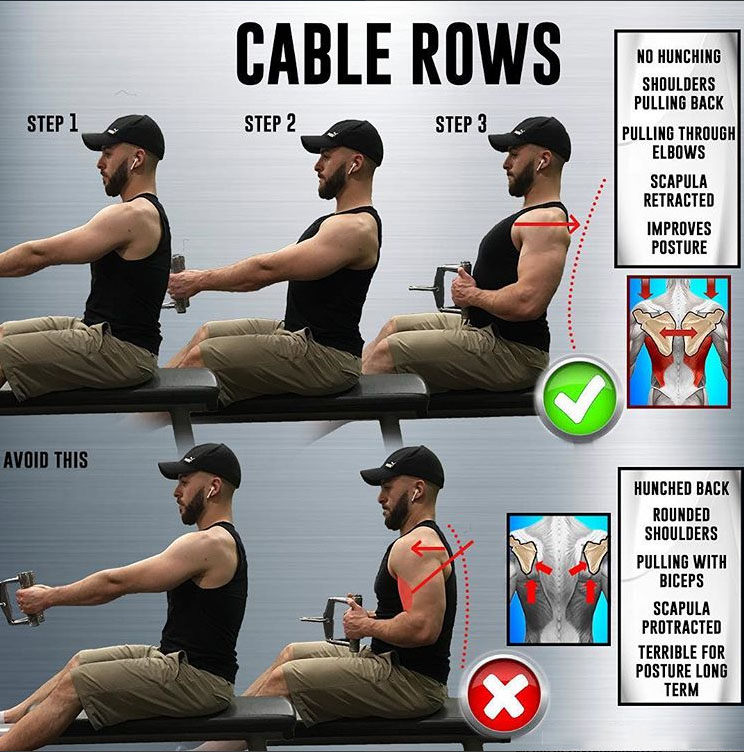 🔥How to Cable Rows