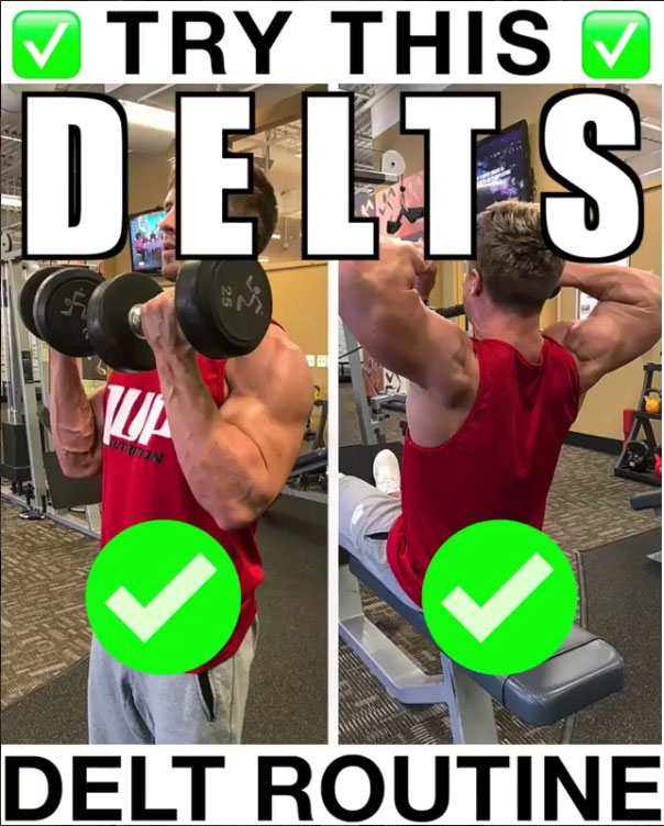 Shoulder Day Circuit