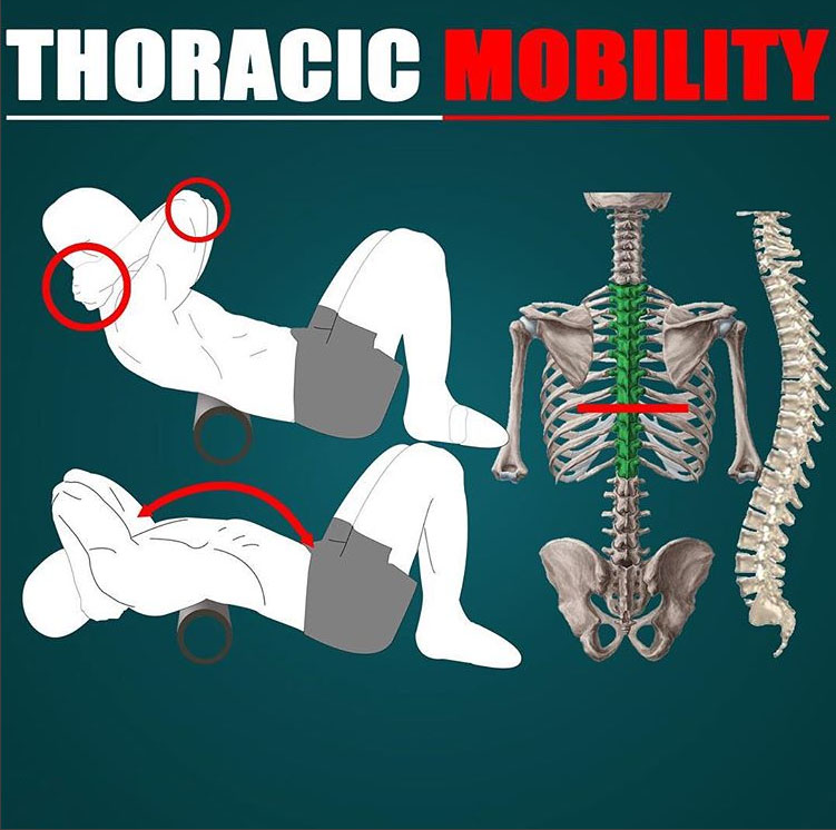 🎯THORACIC MOBILITY