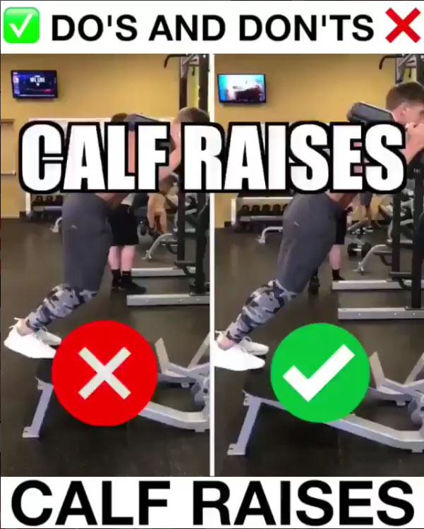 🚨Calf Raises Proper Form