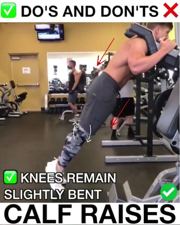 ✅Calf Raises Proper Form