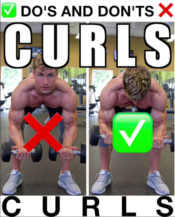 Isolation Dumbbell Curls Proper Form