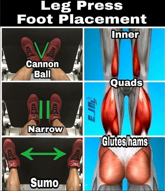 The Leg Press [Foot Placement]
