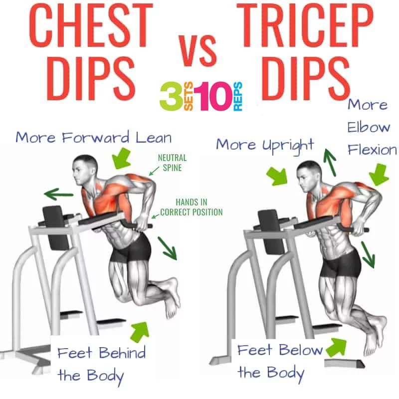 how to chest dips & tricep dips