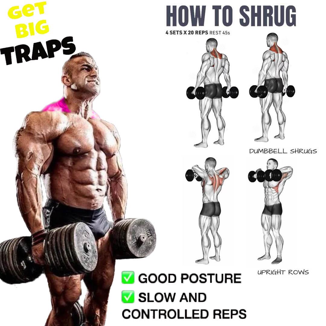 dumbbell shrugs exercises