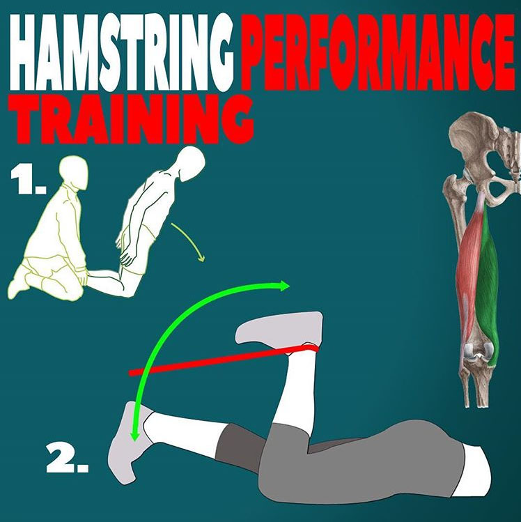 HAMSTRING PERFORMANCE TRAINING
