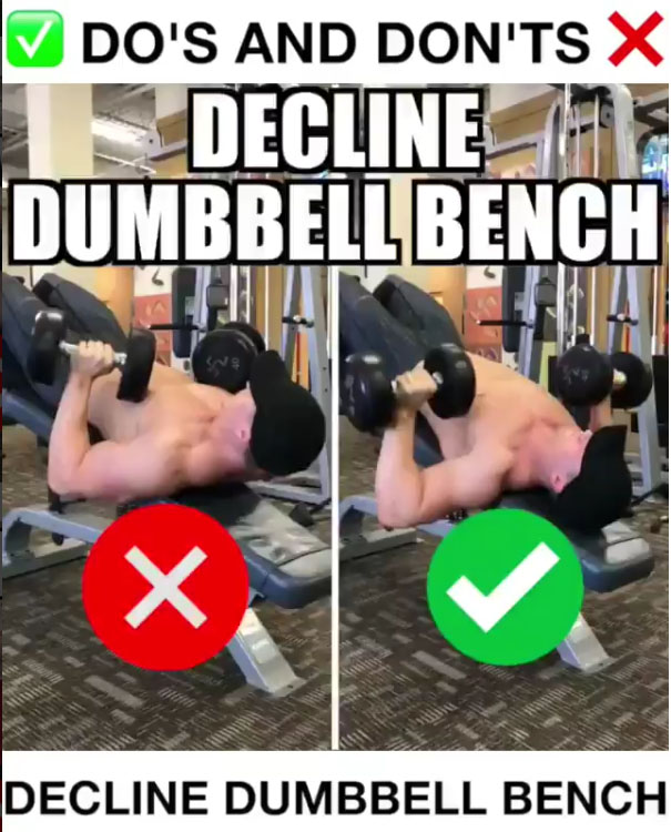 Decline Dumbbell Bench Proper Form
