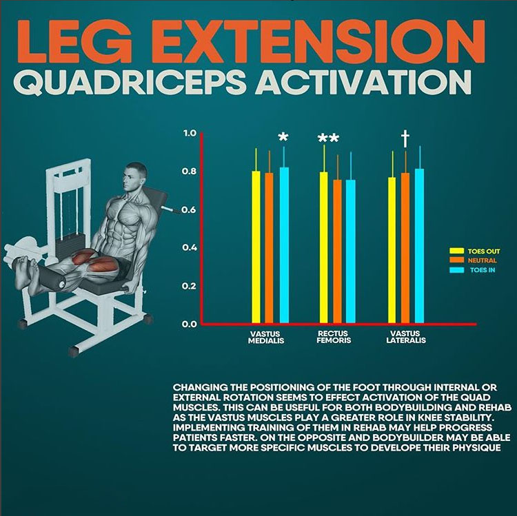 LEG EXTENSION QUADRICEPS ACTIVATION