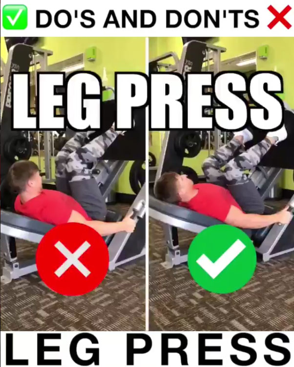 Leg Press Proper Form Video Amp Guide Weighteasyloss Com