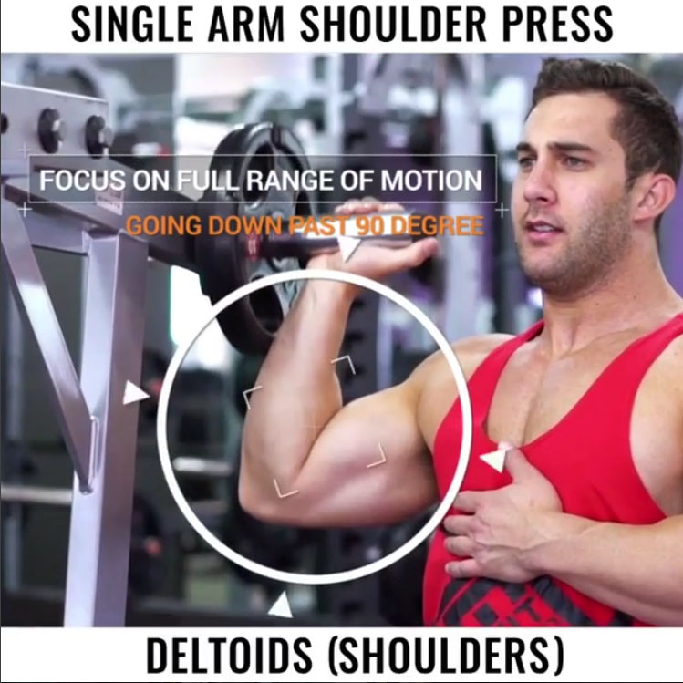 🚨SINGLE ARM SHOULDER PRESS