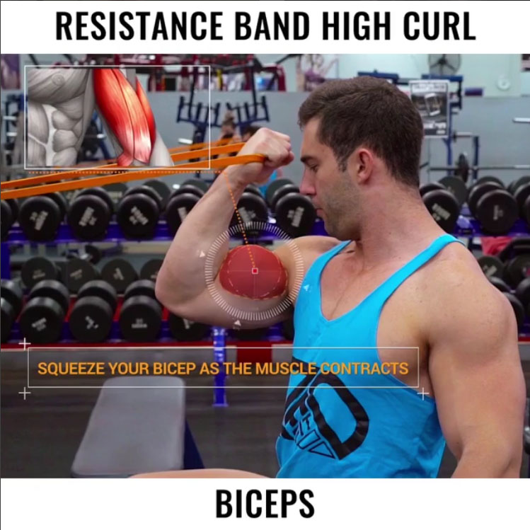 ✅RESISTANCE BAND HIGH CURL