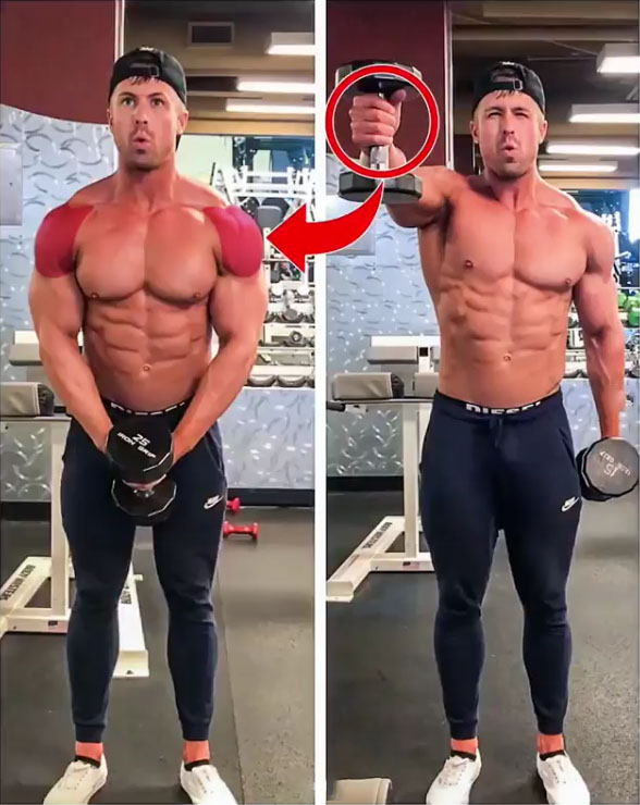 🔥DELTS EXERCISES SPLITS
