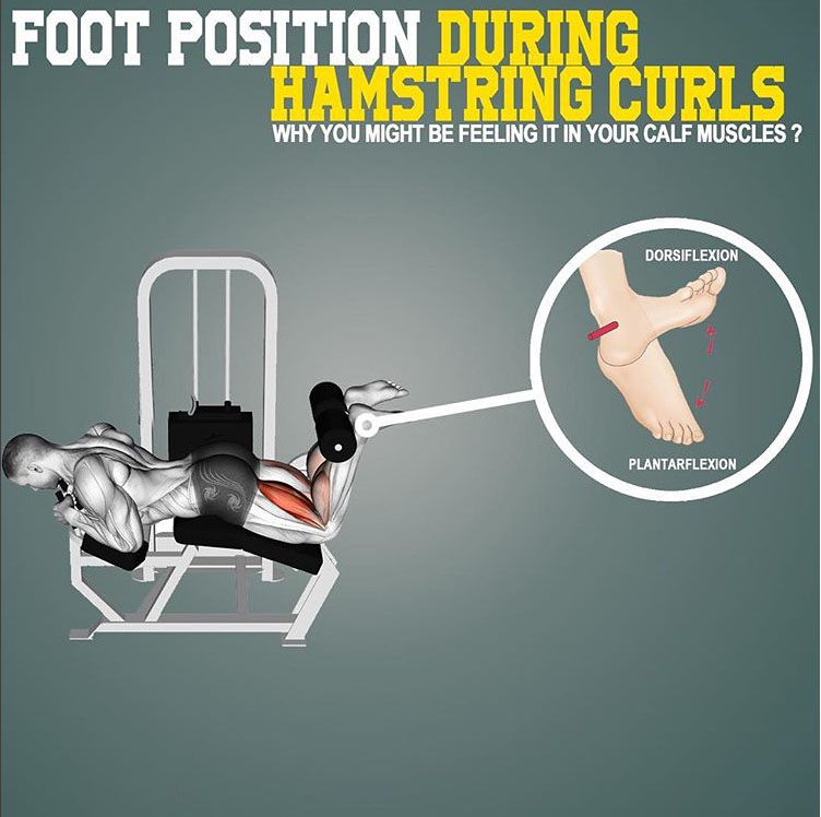 FOOT POSITION DURING HAMSTRING CURLS