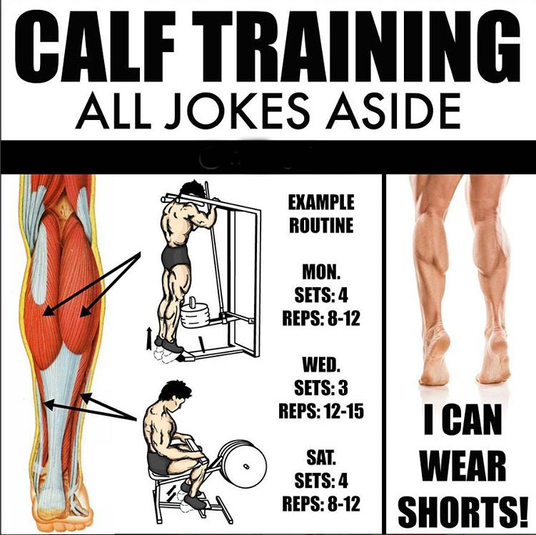 ✅CALF TRAINING DAYS