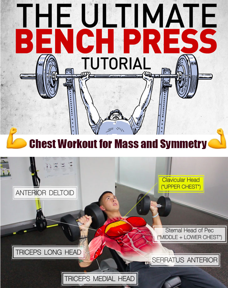 ✅Based Chest Workout for Mass and Symmetry