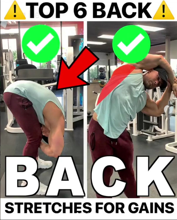 ✅MY TOP 6 Back Stretches