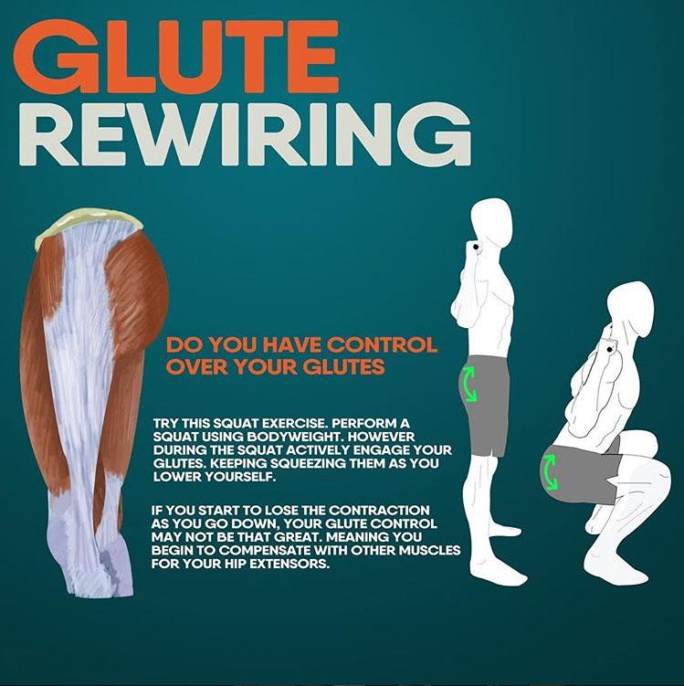 GLUTE REWIRING