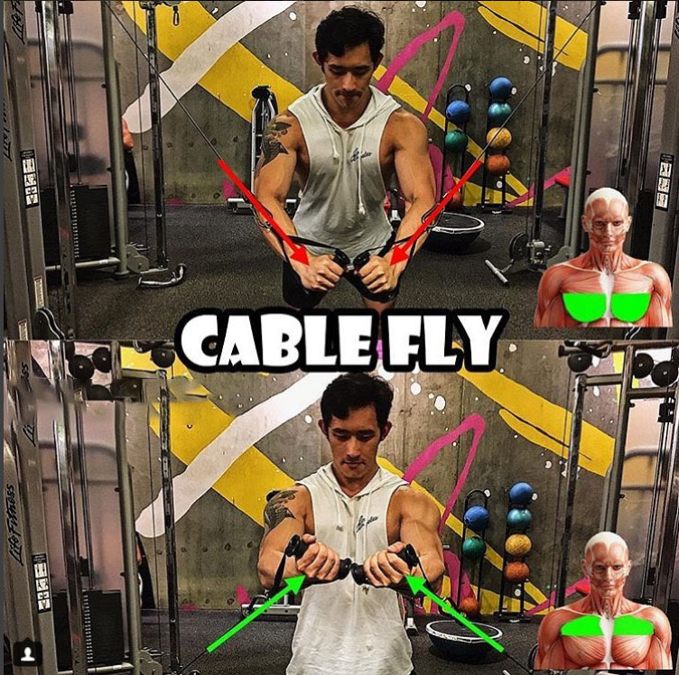Cable Fly