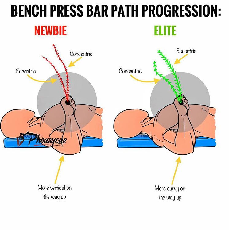 ⭕️ANALISYS OF THE BENCH BAR PATH: NEWBIES vs ELITE LIFTERS