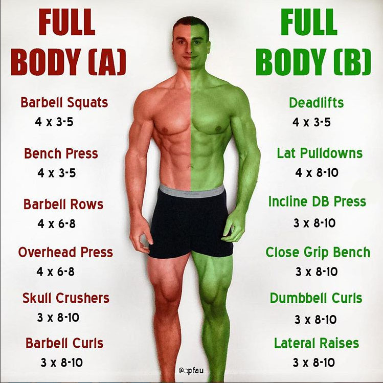 🔥COMPOUND & ISOLATION EXERCISE CHEAT SHEET
