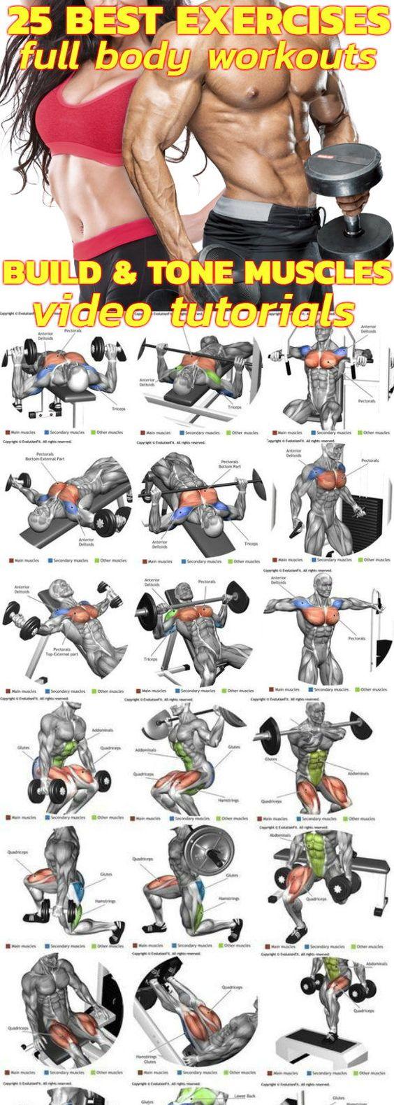 25 Best Exercises Full Body Workout
