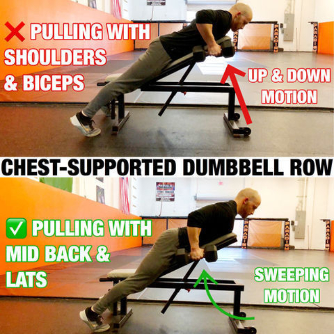 Horizontal Pull (Rows)
