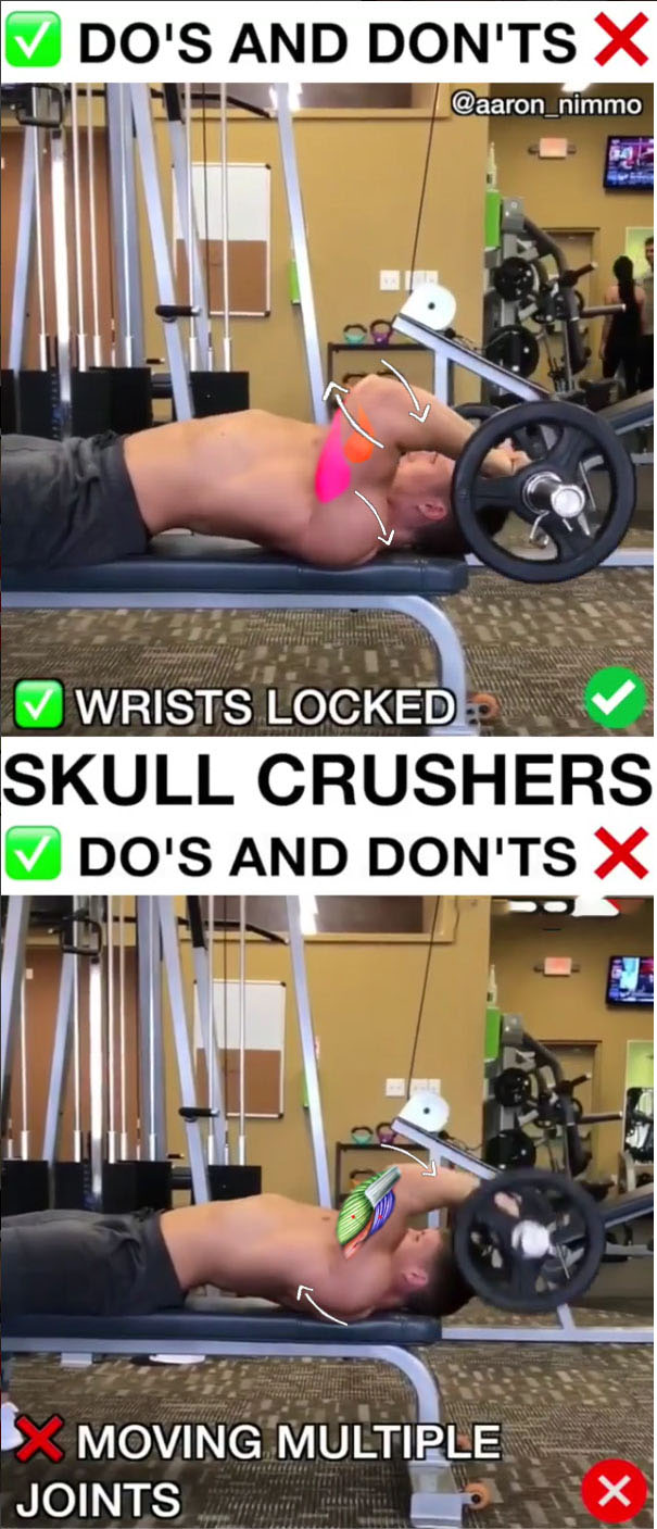 🚨Skull Crushers ✅Right & ❌Wrong