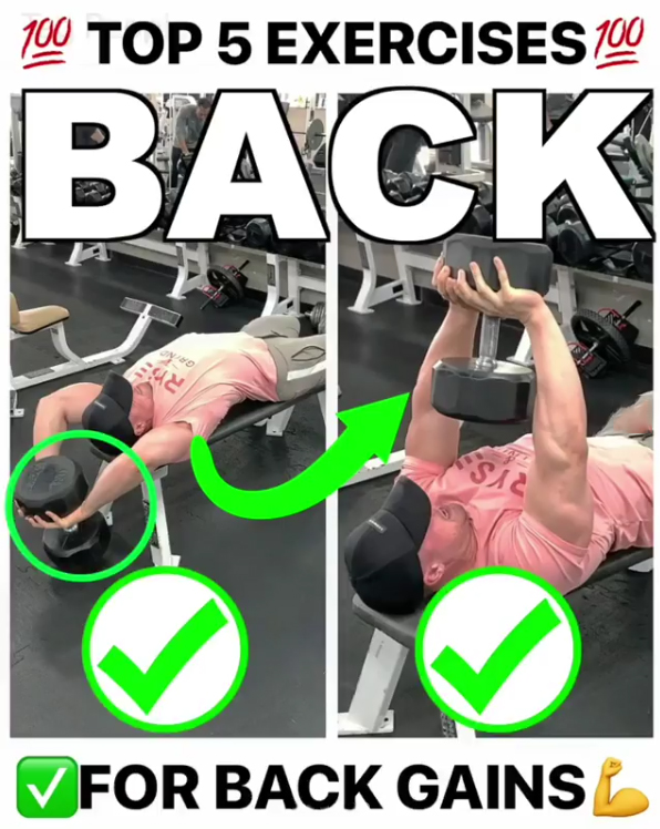 TOP 5 EXERCISES FOR BACK