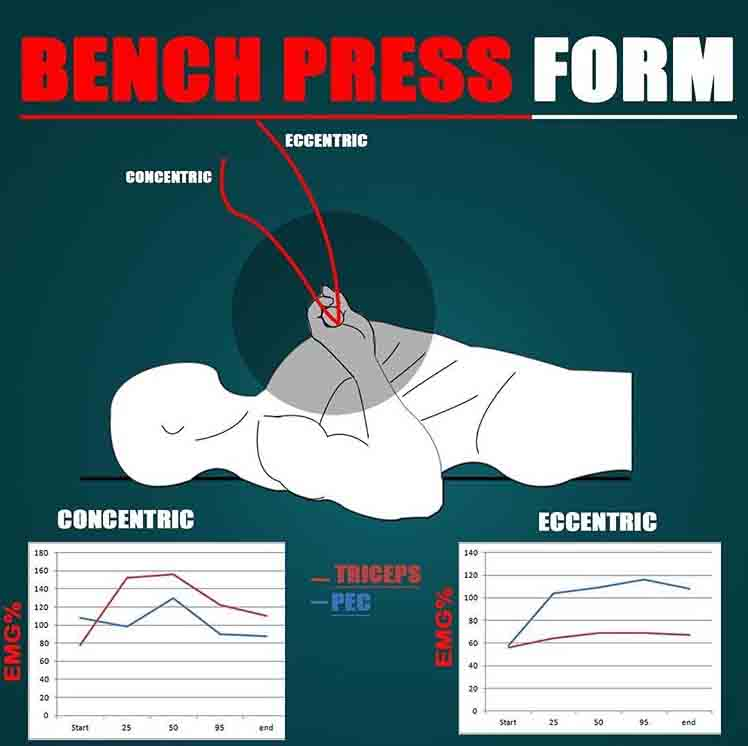 BENCH PRESS FORM