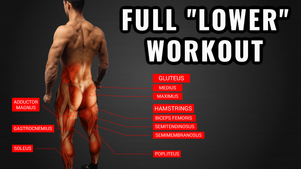 Based Lower Body Workout