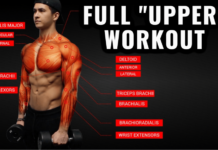"FULL ""UPPER"" WORKOUT"
