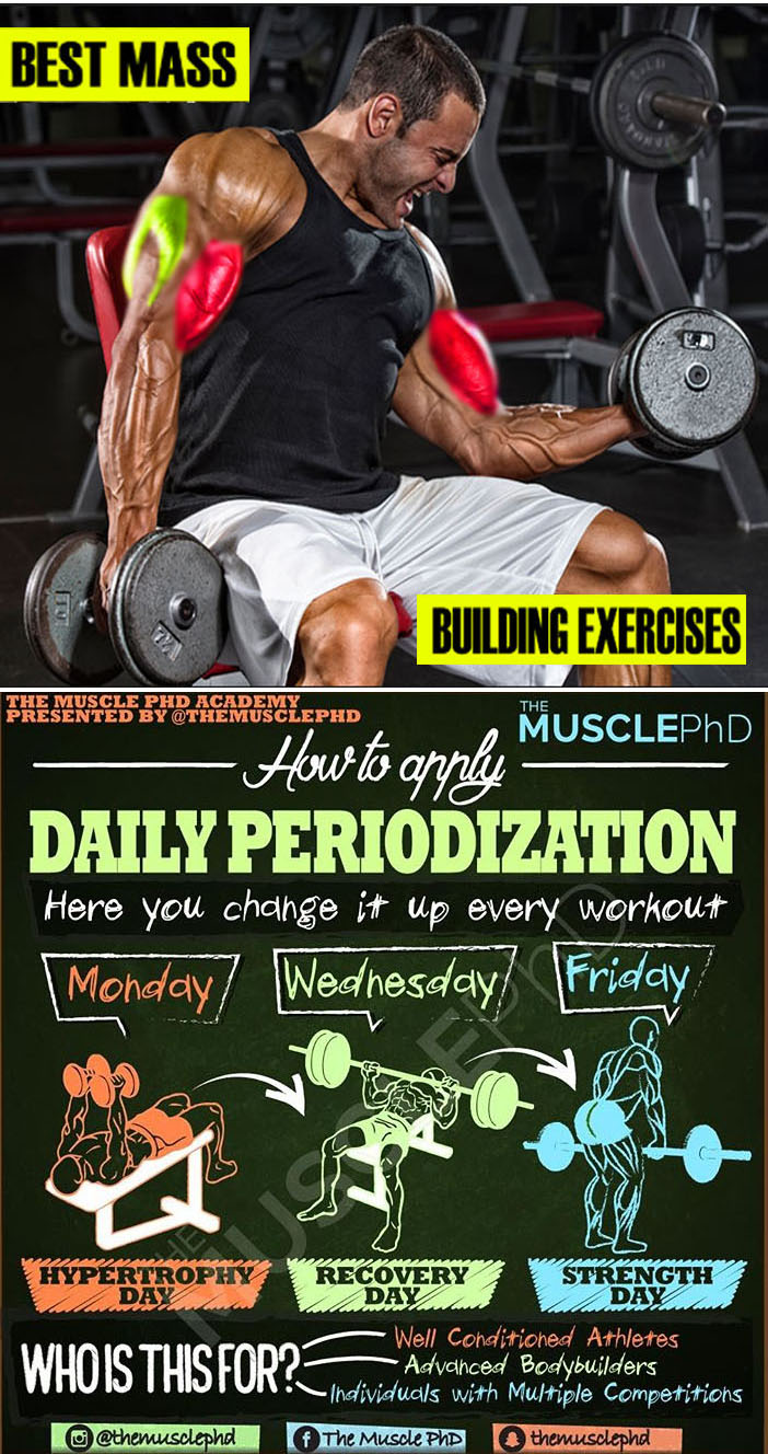 PERIODIZATION WORKOUT