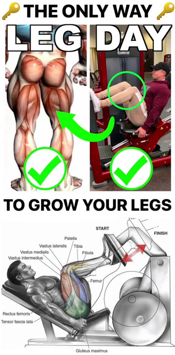GROW YOUR LEG