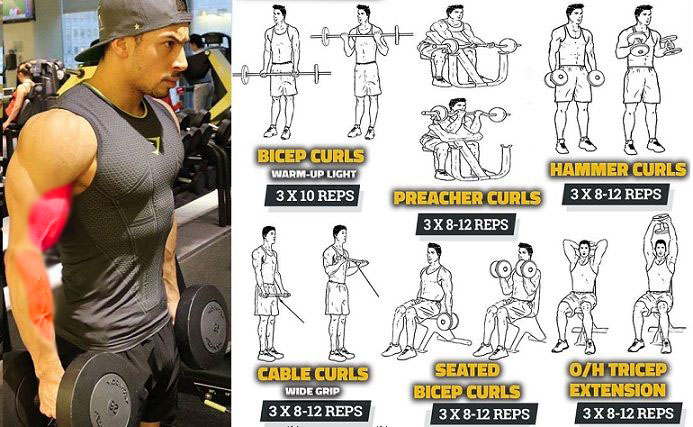 Shoulders & Bicep Curl