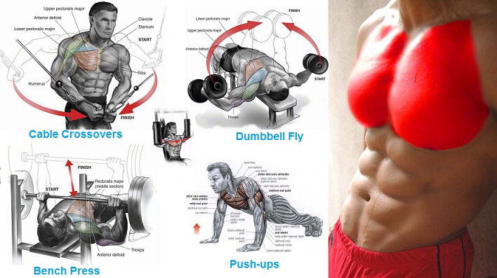 Various Executing Chest Exercises