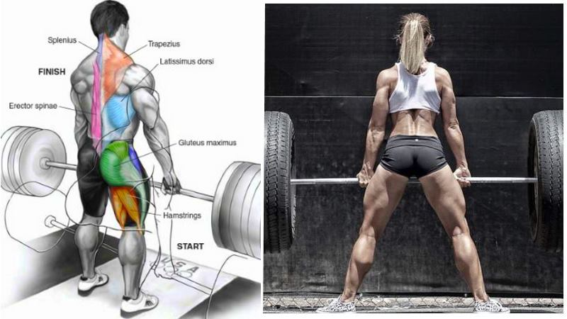 Deadlift Strength