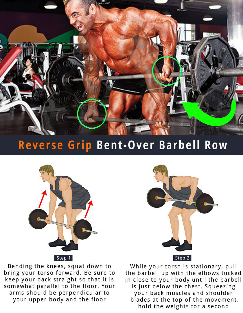 Reverse-Grip Barbell Row
