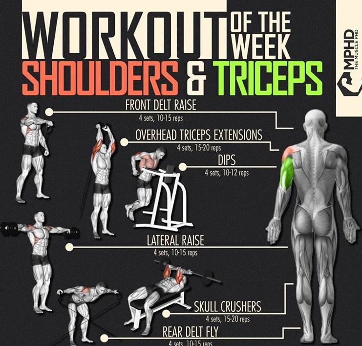Workout Shoulder & Triceps