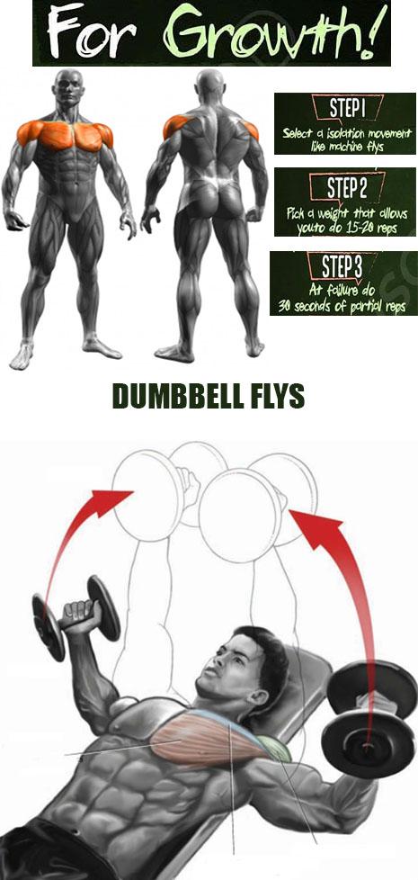 DUMBBELL FLYS EXERCISES
