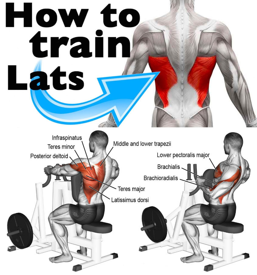 How to Train Lats
