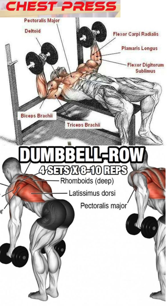 SUPERSETS & CHEST - BACK