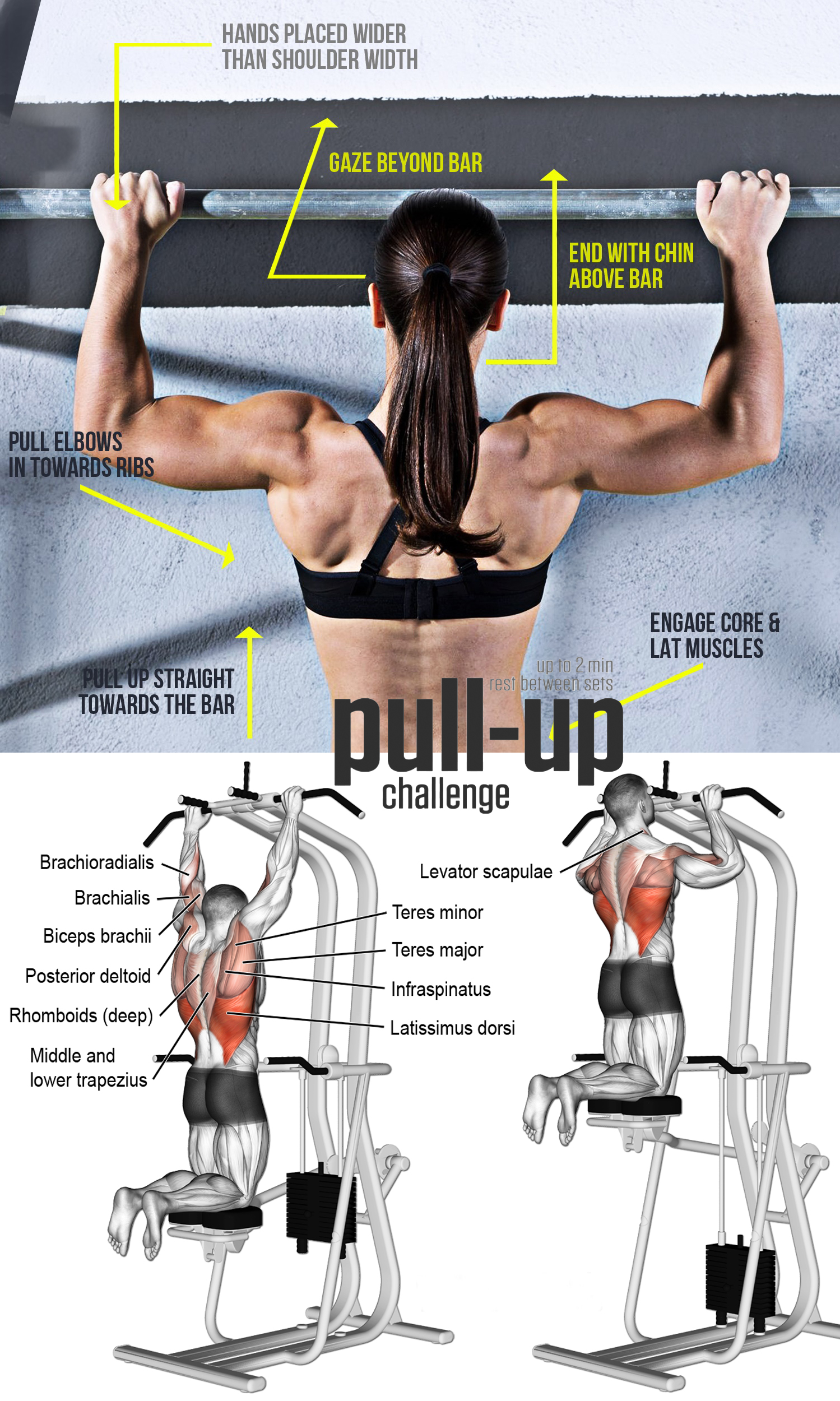 LAT PULL DOWNS