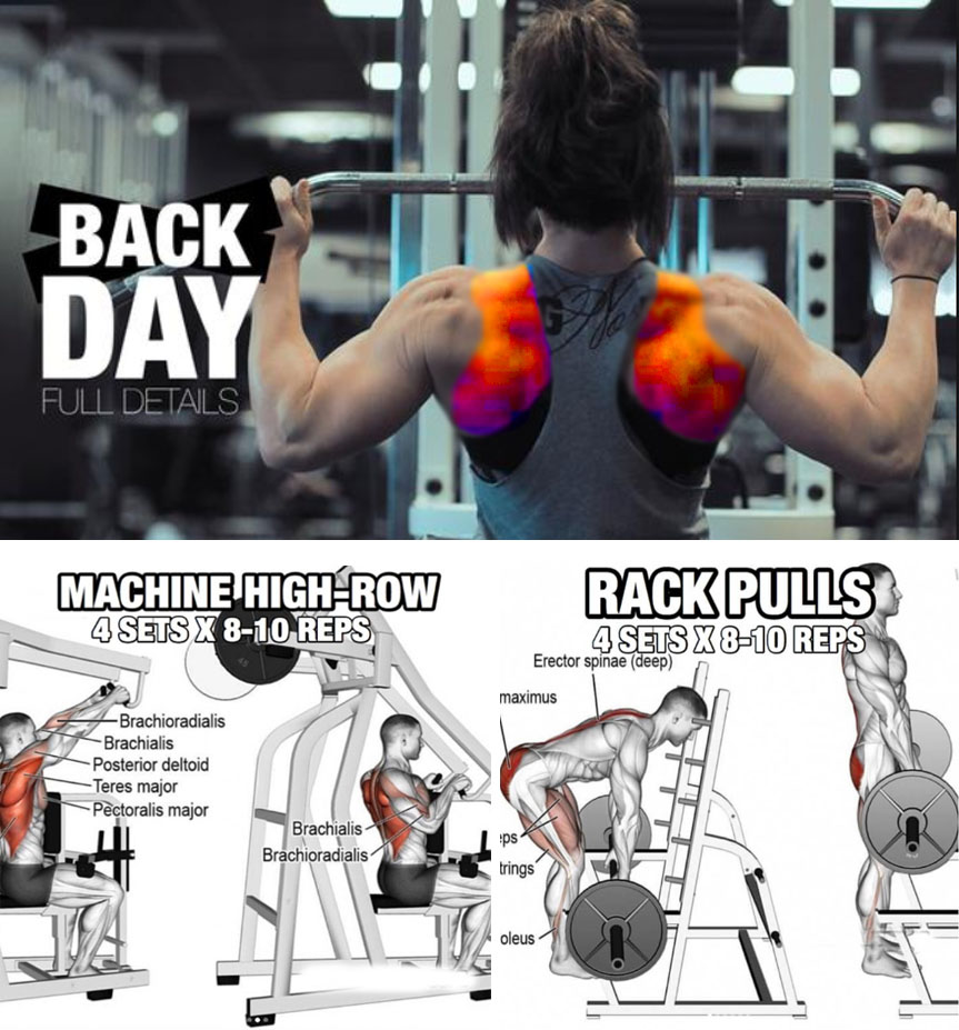 Basic Lat Pull-Down Technique