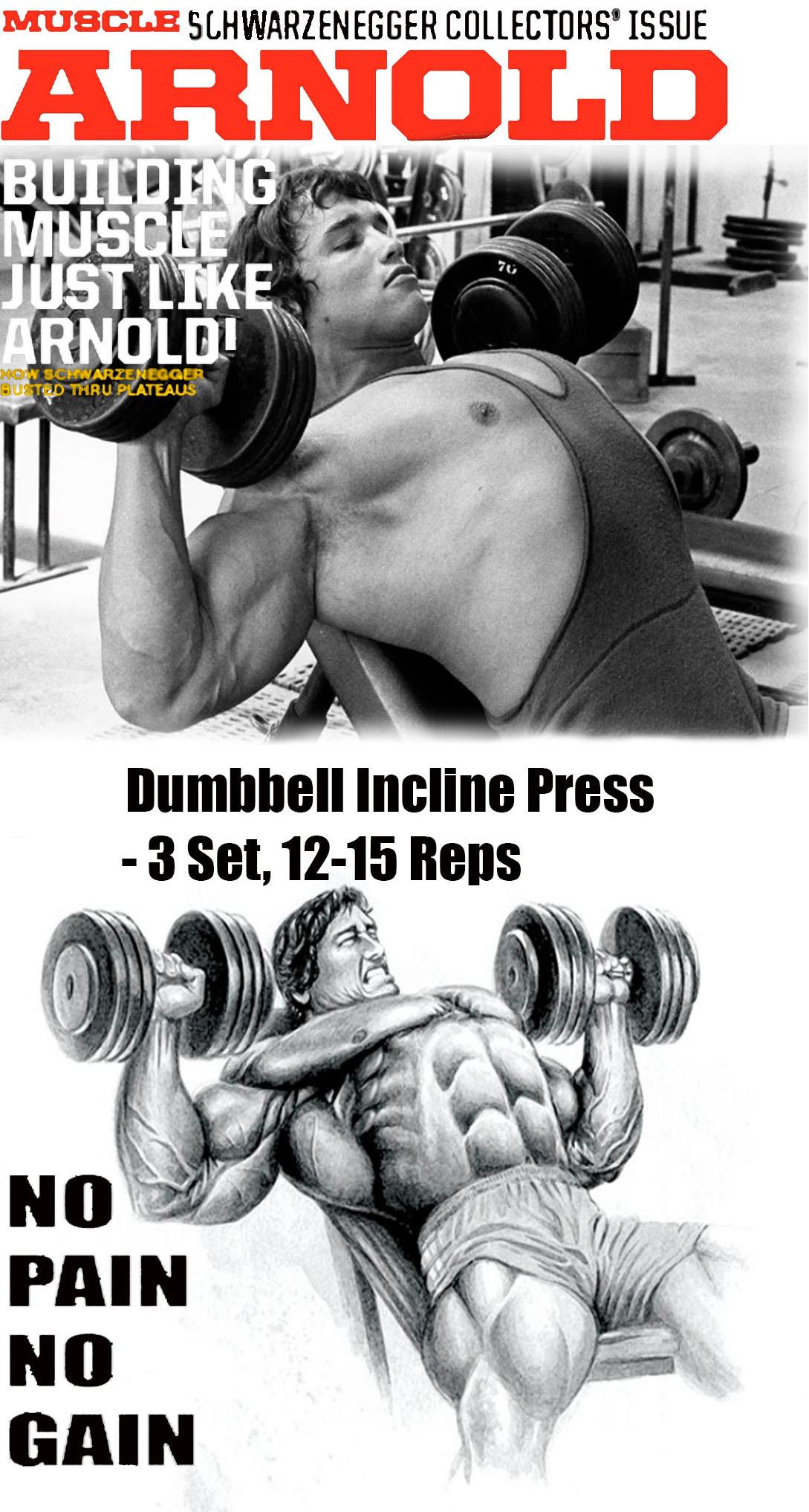 Dumbbell Incline Press