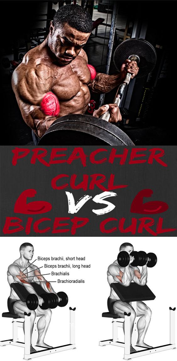 Preacher Curl & Biceps Curl