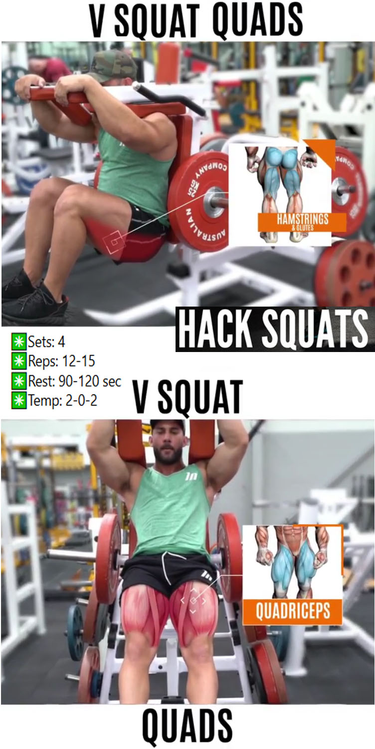 V SQUAT MACHINE