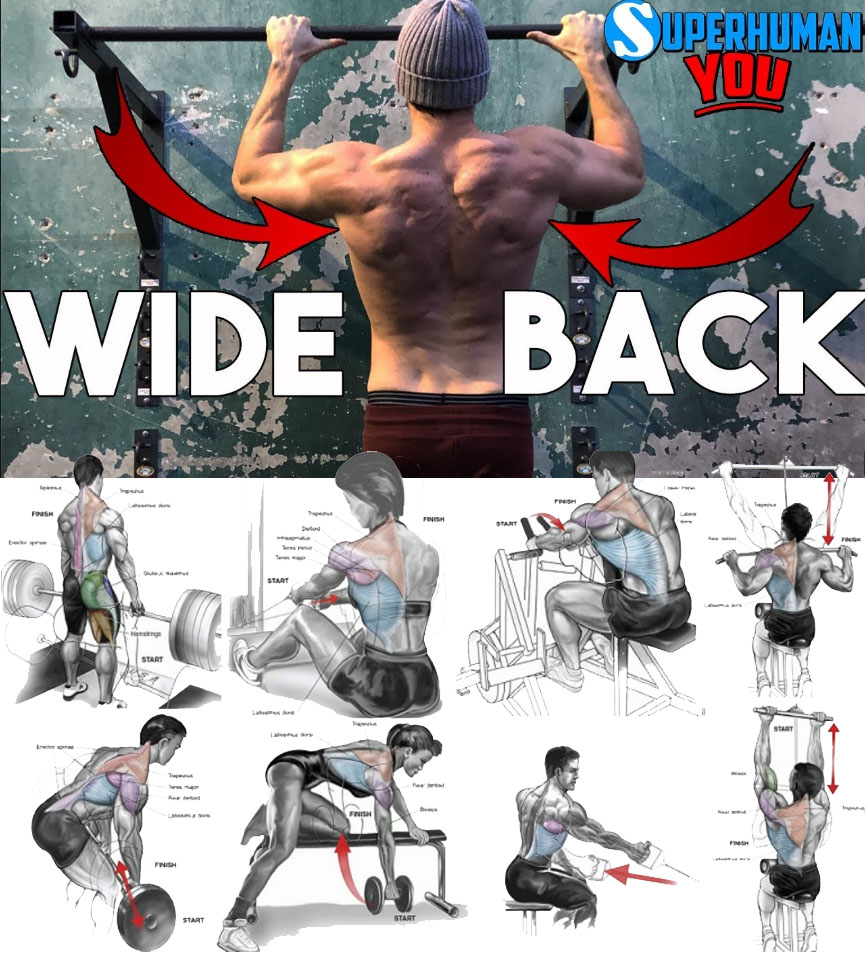 4 WIDE BACK EXERCISES