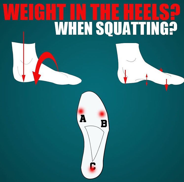 Weight in the Heels & When Squatting